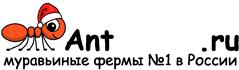 Муравьиные фермы AntFarms.ru - Тамбов